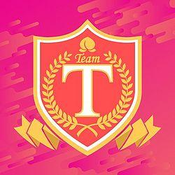 Team T - Wiki48